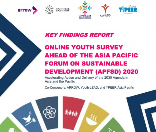 Key Findings Report: APFSD Youth Survey